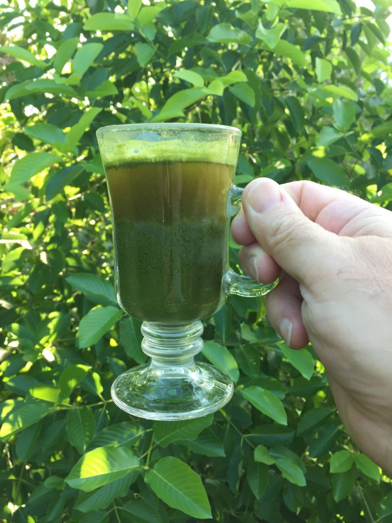 kratom powder in a cup of tea