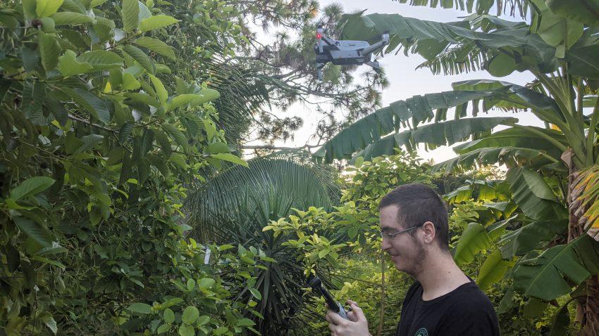 Drones and Matt documenting kratom trees