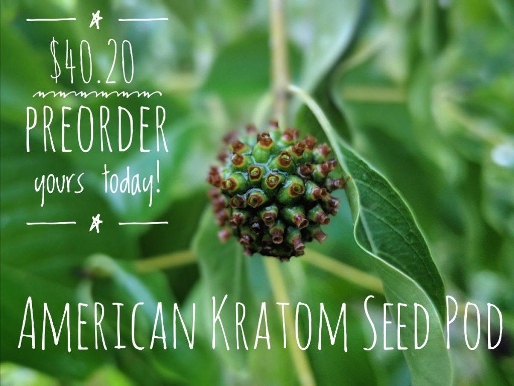 USA Kratom Seed PodPre-Order!